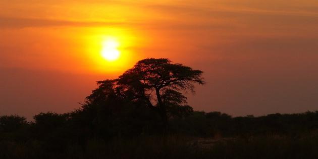 Sonnenuntergang am Fluss Chobe Botswana