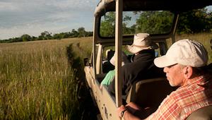 Safari in Botswana Afrika