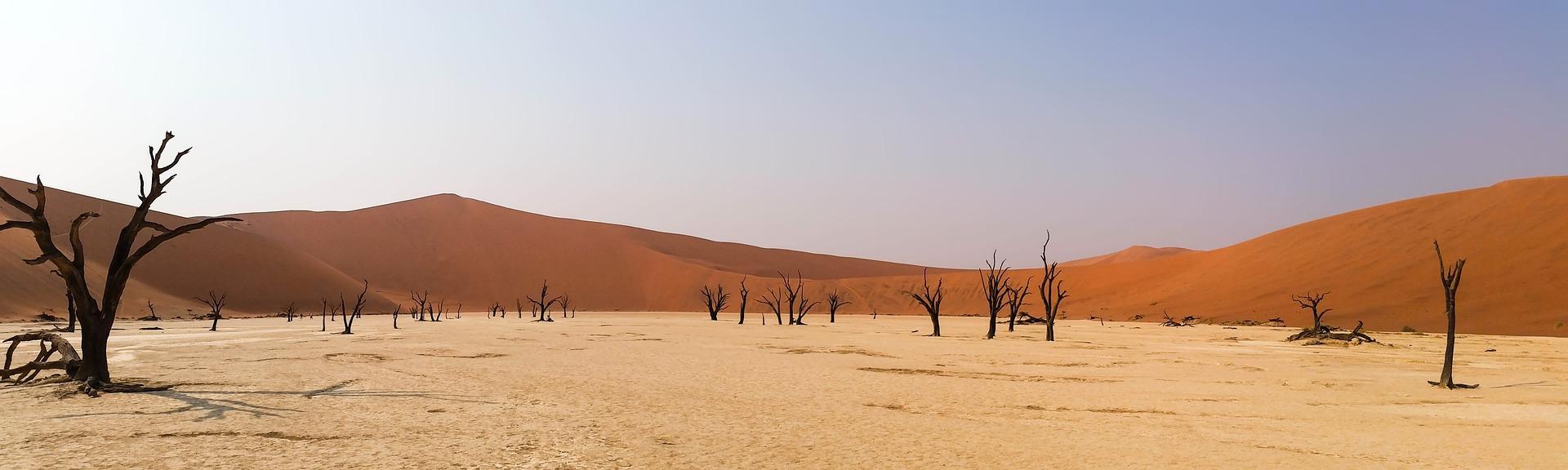 Wüstentour in Namibia