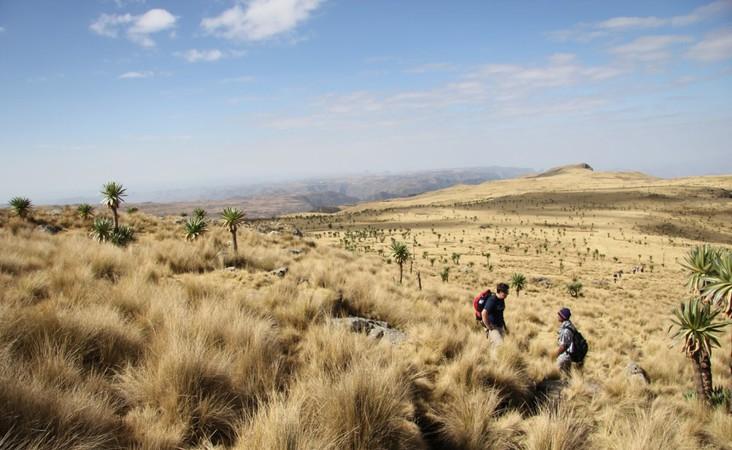 Landschaft in Äthiopien