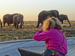 Bootstour auf dem Chobe in Botswana