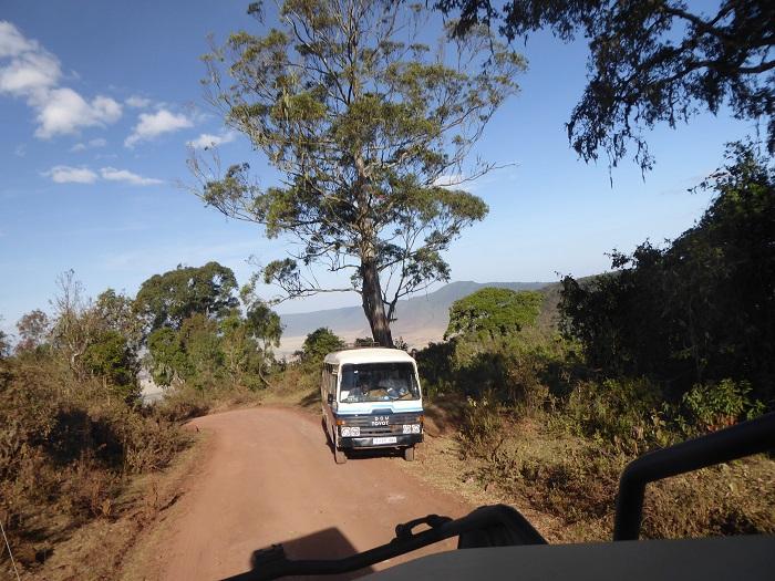 Safariauto
