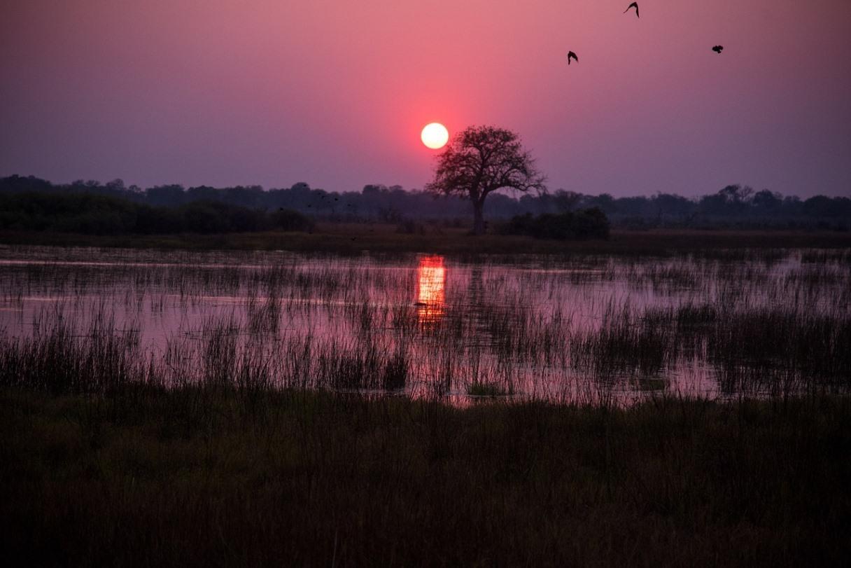 Sonnenuntergang im Chobe Nationalpark