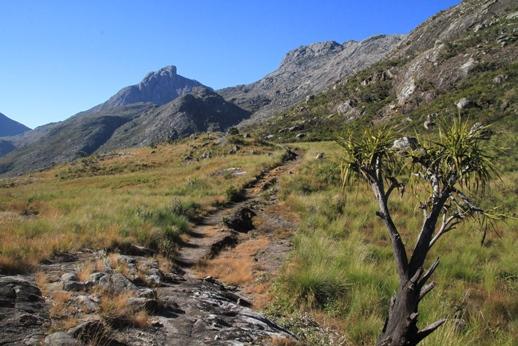 Landschaft in Malawi Zomba Plateau