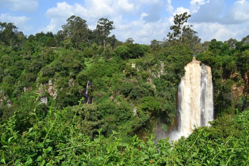 Regenwald in Kenia