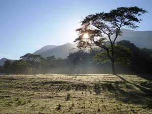 Sonnenaufgang in der Serengeti